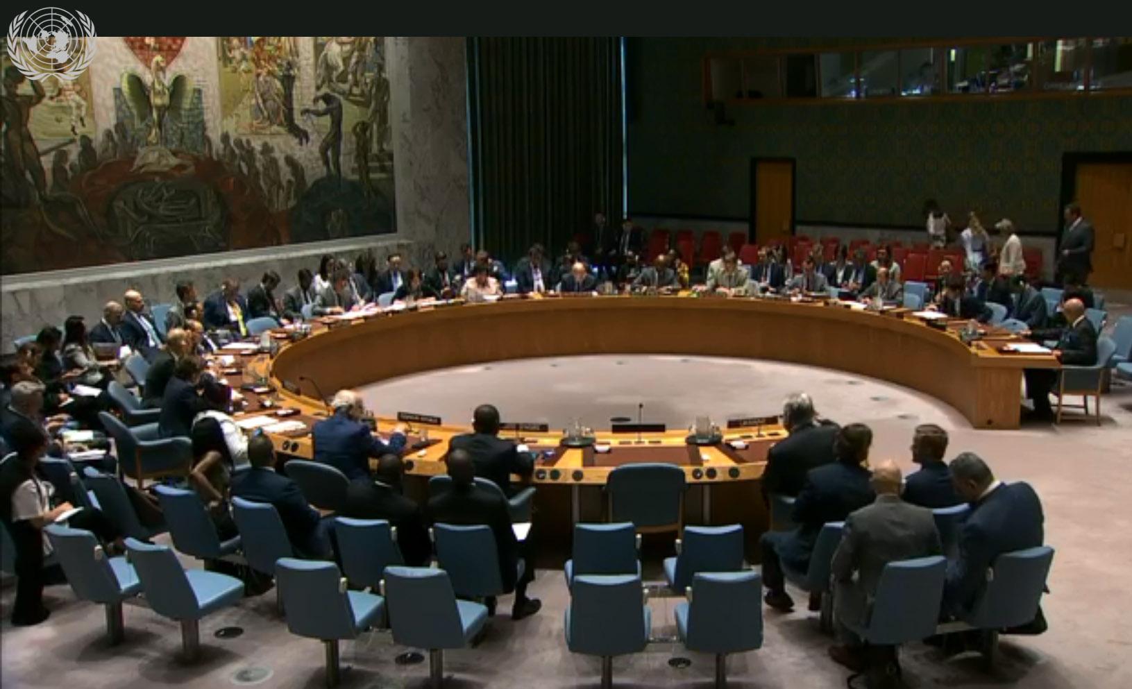 Языковой закон в Совбезе ООН: о чем говорили